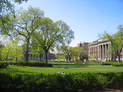 application essay for university of minnesota
